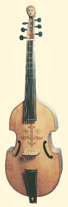 base viol, front view
